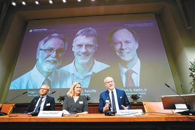 2019年諾貝爾生理學或醫學獎揭曉
