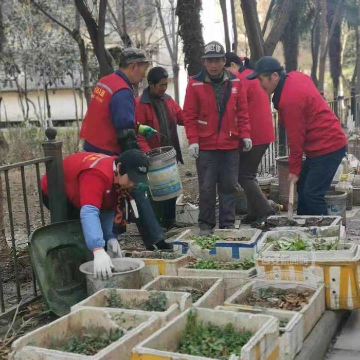 西安巩固老旧小区改造成效 净化环境卫生喜迎春节