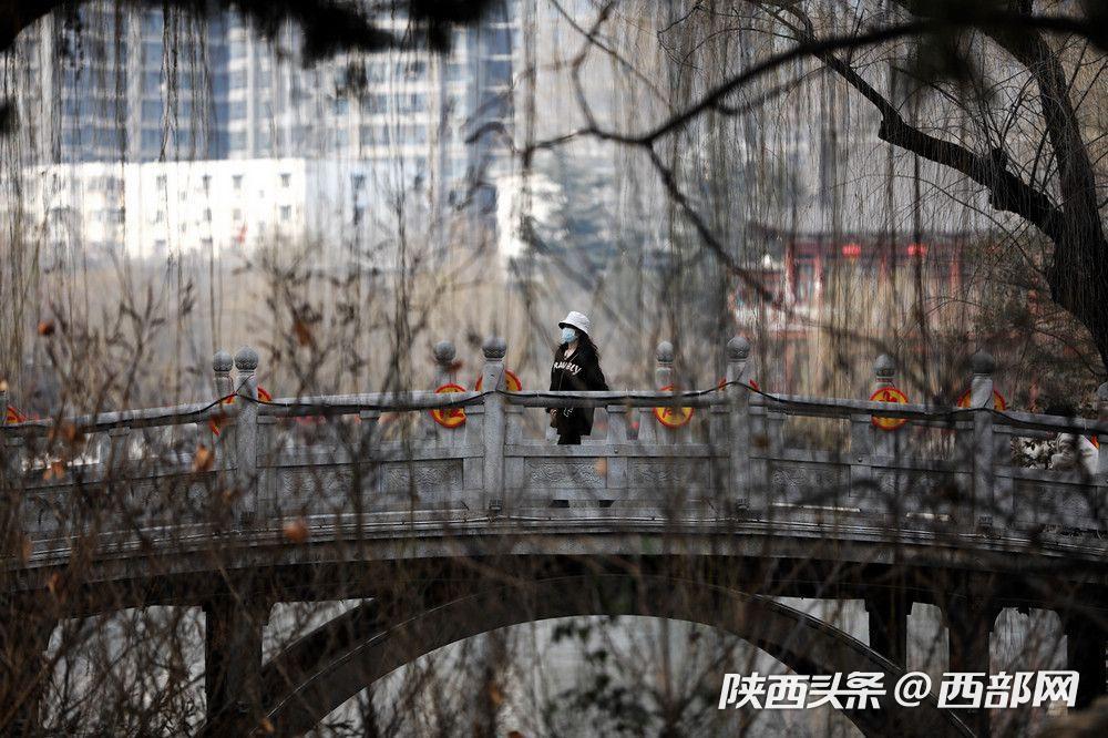 """兴庆宫公园春暖花开 西安市民""""踏春赏花""""仍需谨慎"""