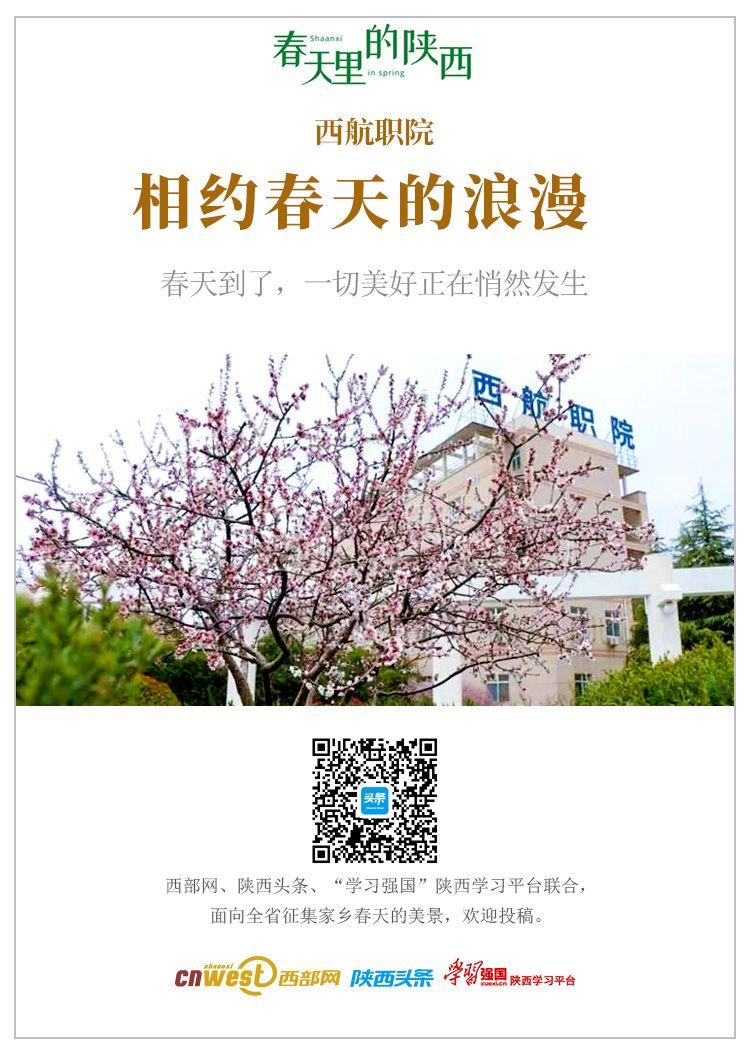 春天里的陕西|西航职院:花开航空城 千花百卉竞芳菲