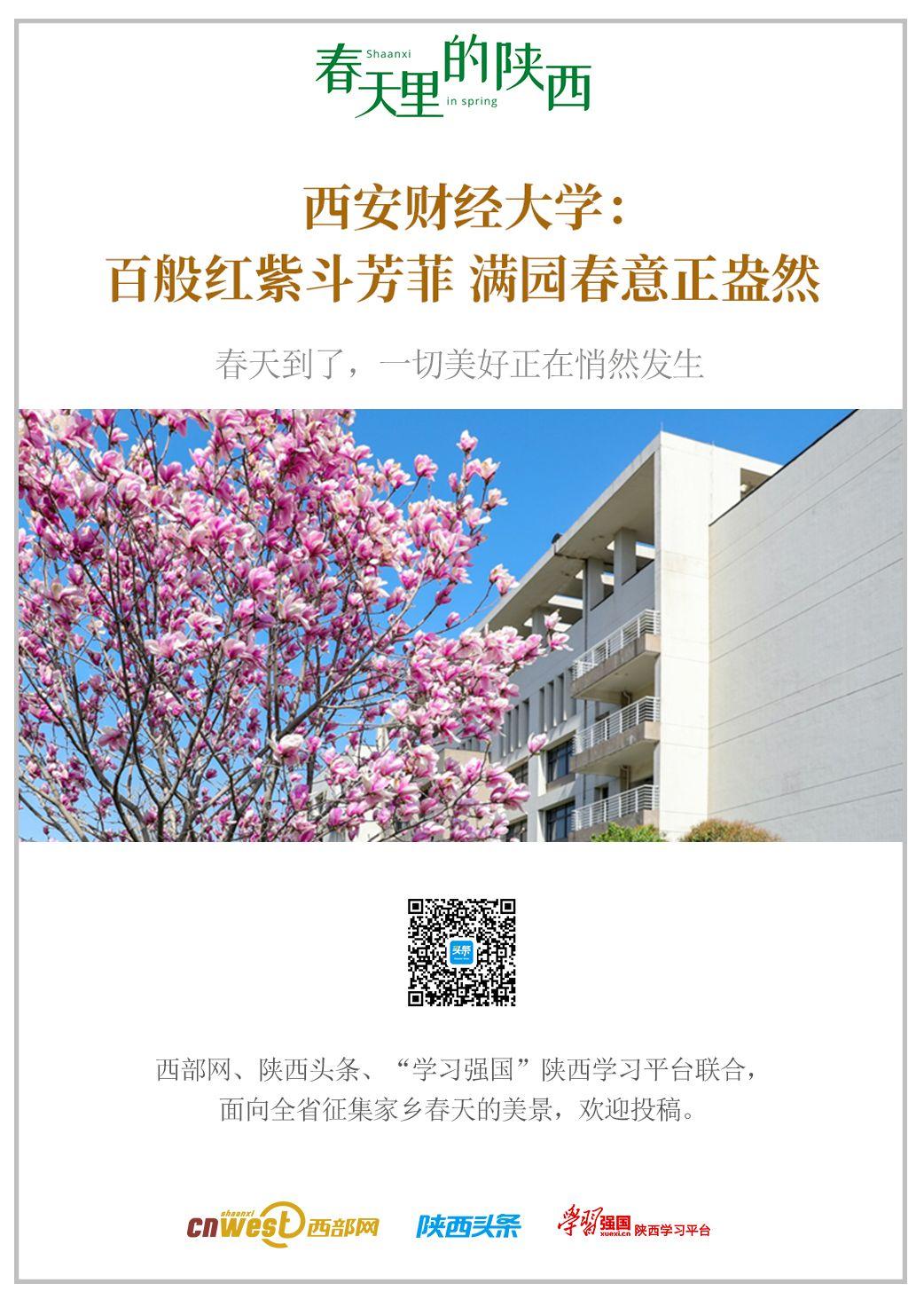 (融媒报道)春天里的陕西 | 西安财经大学:百般红紫斗芳菲 满园春意正盎然