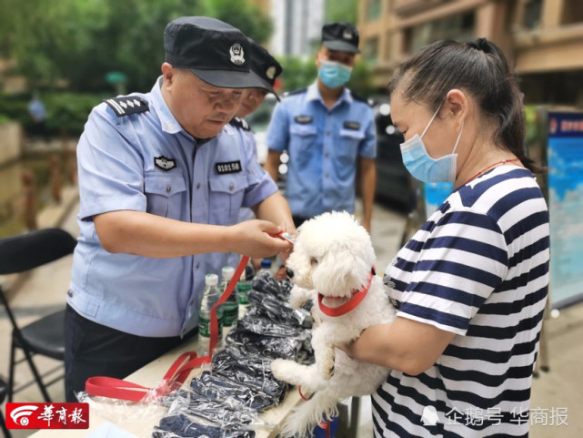西安警方为全市在册狗狗统一配发