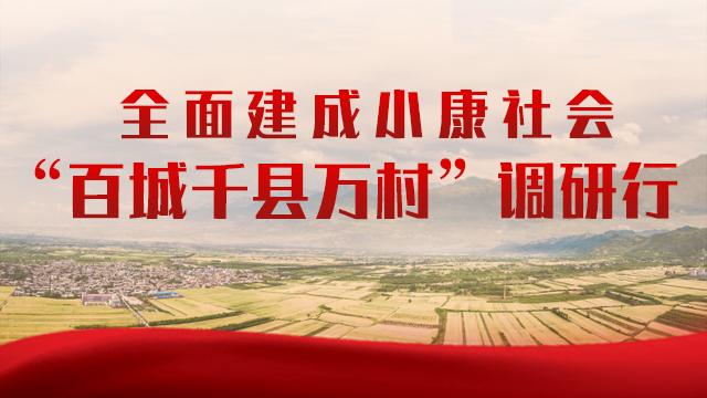 """全面建成小康社会 """"百城千县万村""""调研行"""