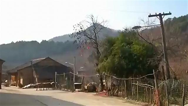 """今日点击 周至:""""玉兰花谷""""引纷争"""