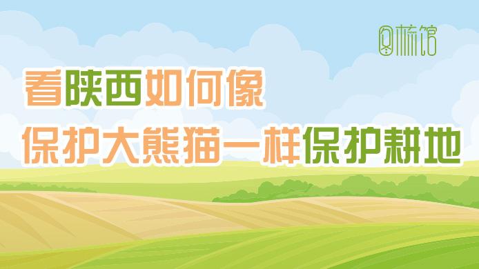 图梳馆丨看陕西如何像保护大熊猫一样保护耕地