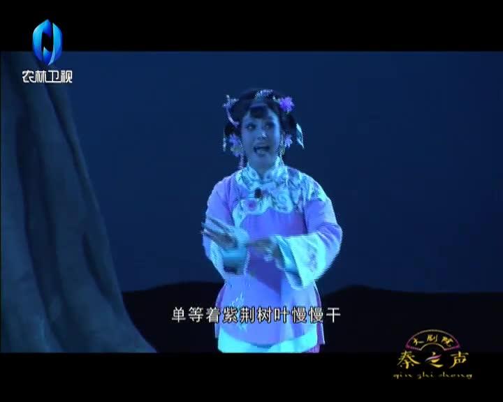 秦之声大剧院(2021-02-02)