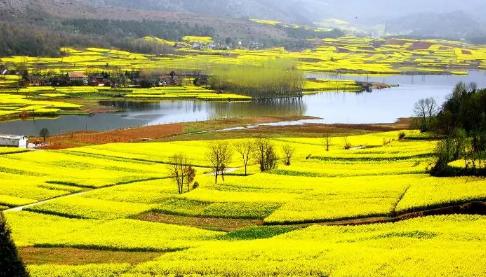 陕西官方最新发布12条乡村游线路