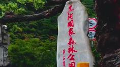 """秦岭里的""""自然学校"""""""