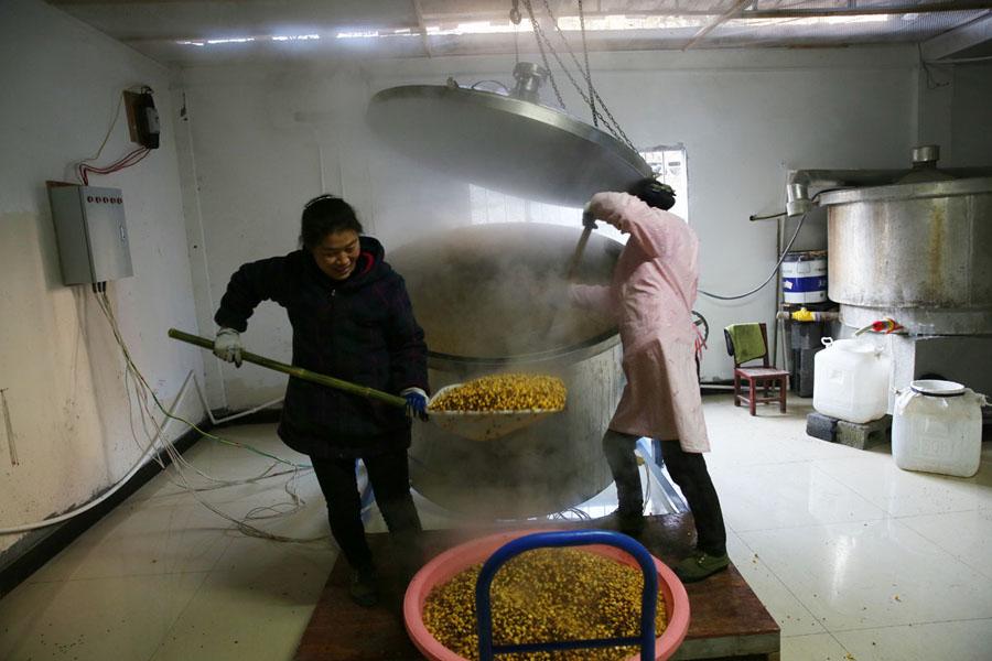 镇坪大山里的酒娘:一天烤上百斤白酒 成远近闻名烤酒师傅