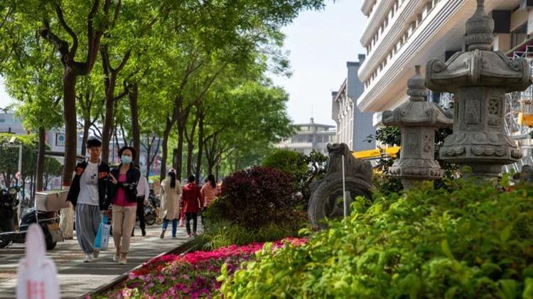XIN莲湖 新征程丨精品绿化项目让莲湖更有活力