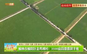 陜西廣電融媒體集團(臺)新聞中心推出《走進鄉村看小康·陜西篇》特別直播節目