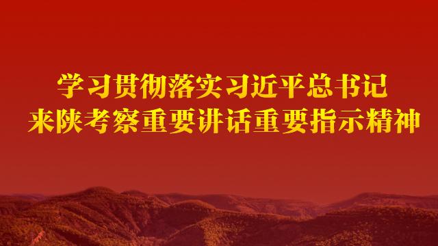 學習貫(guan)徹落實習近平總(zong)書記來陝考察重要講話重要指示精神(shen)