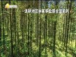 TV1周刊 (2019-09-07)