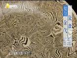 华山论鉴 (2019-08-11)