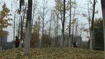[天气]陕西省气象台发布寒潮蓝色预警 我省迎入秋后最强冷空气