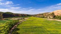 [農村大市場]榆林:發展特色產業 助力鄉村振興