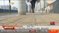 人行道上竖起二百多石桩 行人体验:像在走迷宫