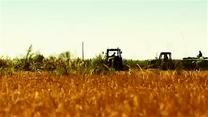 [陕西故事]河长在行动 因地施策 绿色发展