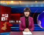 陕西文艺 (2020-01-22)