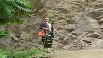 [百家碎戏]情系深山