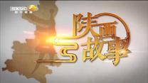陕西故事 耀眼的青铜