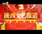 陕西文艺 (2020-03-04)