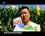 中国农资秀 (2020-03-30)
