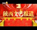 陕西文艺(2020-04-13)