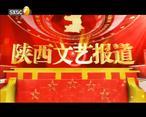陕西文艺 (2020-04-22)