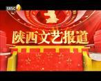陕西文艺 (2020-05-04)