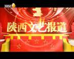 陕西文艺(2020-05-10)
