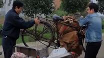 [百家碎戏] 一辆自行车