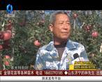 天天农高会 (2020-05-25)