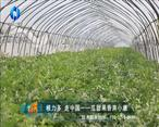 中國農資秀 (2020-05-30)