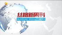 丝路新周刊(2020-05-30)