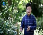 中国农资秀 (2020-06-03)
