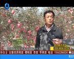 天天农高会 (2020-06-09)