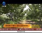 天天农高会(2020-06-11)