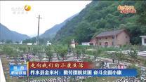 【走向我們的小康生活】柞水縣金米村:勤勞擺脫貧困 奮斗全面小康