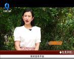 天天农高会 (2020-06-16)