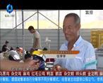 天天农高会 (2020-06-25)