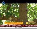 天天农高会(2020-06-27)