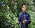 中国农资秀 (2020-06-28)