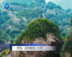 农村大市场 武夷:茶香缭绕山水间