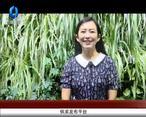 天天农高会 (2020-07-06)