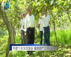 农村大市场 专家下乡为农服务 猕猴桃产业提质增效