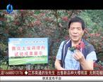 天天农高会 (2020-09-01)