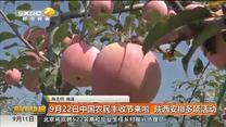 9月22日中国农民丰收节来啦 红黑大战安排多项活动