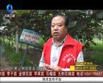天天农高会 (2020-09-19)