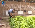 农村大市场 双龙:生态发展让矸石山变废为宝